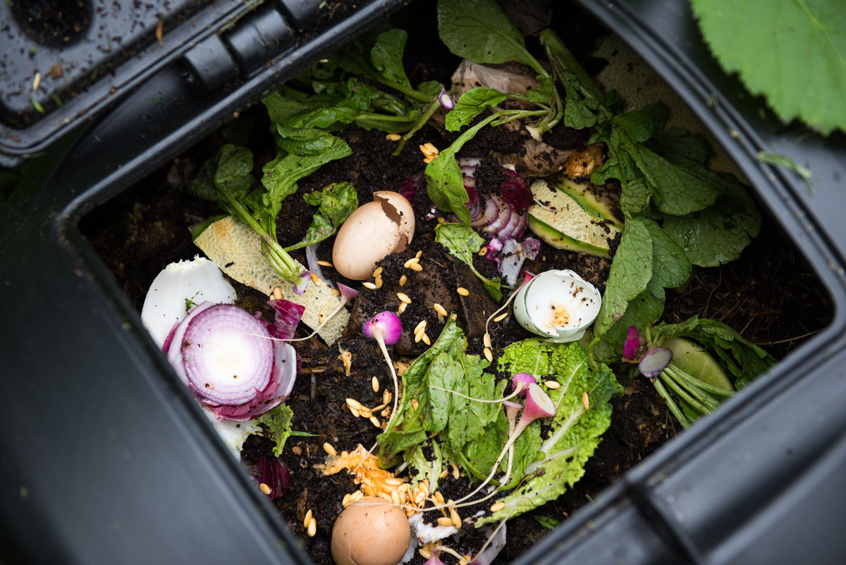 4 Reasons why everyone should do home composting